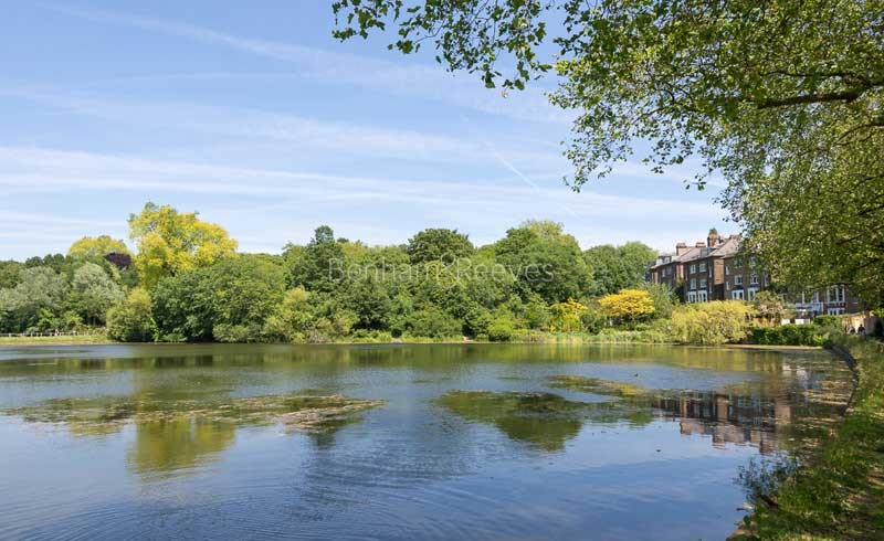 Hampstead Area Guide - Image 13