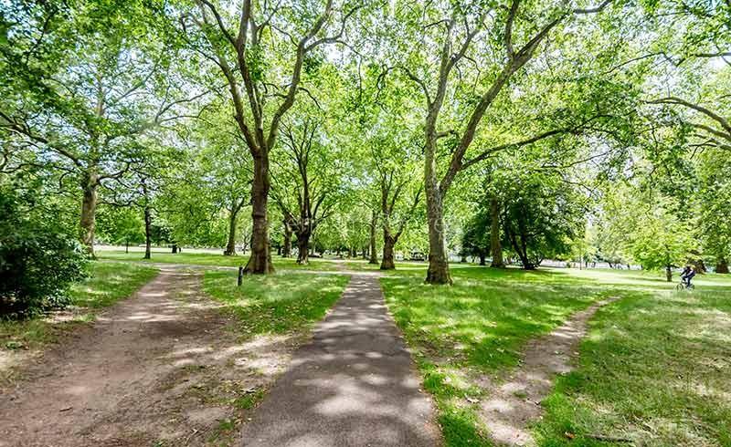Oval & Kennington Area Guide - Image 2