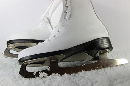 Ice Skating - Natural History Museum
